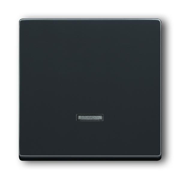 Kryt stmievača s krátkocestným ovládačom, s tlejivkou, Future® linear, Solo®, Solo® carat, antracitová