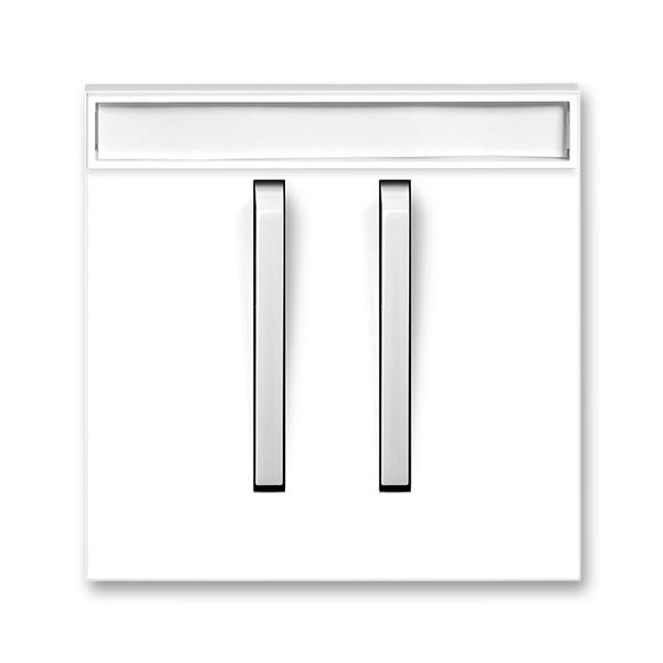 Kryt spínača jednoduchý s dvomi páčkami, s popisovým poľom, Neo®, biela / ľadová biela