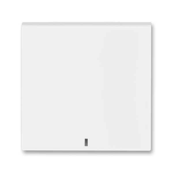 Kryt spínača kolískového s čírym priezorom, Levit®, biela / ľadová biela