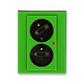 Zásuvka dvojnásobná s ochrannými kolíkmi, s clonkami, s natočenou dutinou, s ochranou pred prepätím, Levit®, zelená / dymová čierna