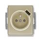 Zásuvka jednonásobná s ochranným kolíkom, s clonkami, s USB nabíjaním, Time®, Time® Arbo, šampanská