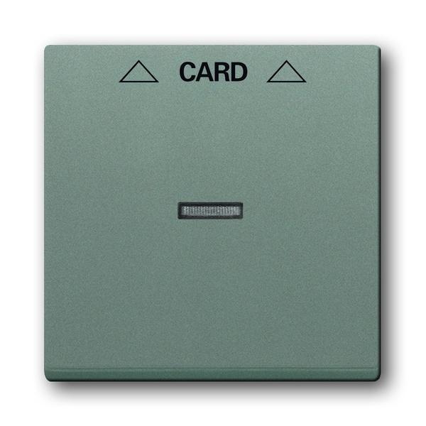 Kryt spínača kartového, metalická šedá