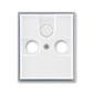 Kryt zásuvky anténnej, s vylamovacím otvorom, Element®, biela / ľadová šedá