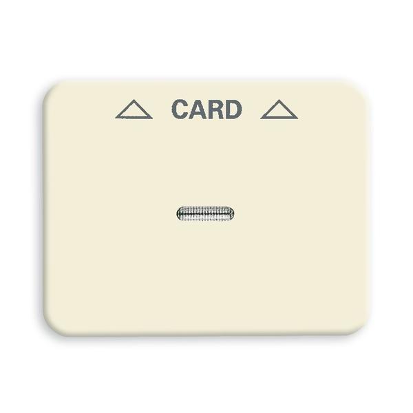 Kryt spínača kartového, s čírym priezorom, s potlačou, Alpha exclusive®, slonová kosť